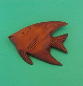 mahogany angel fish