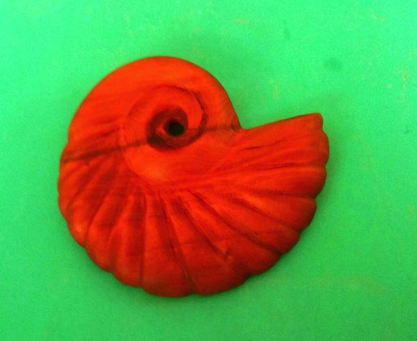 small nautilus Anguilla wood carving